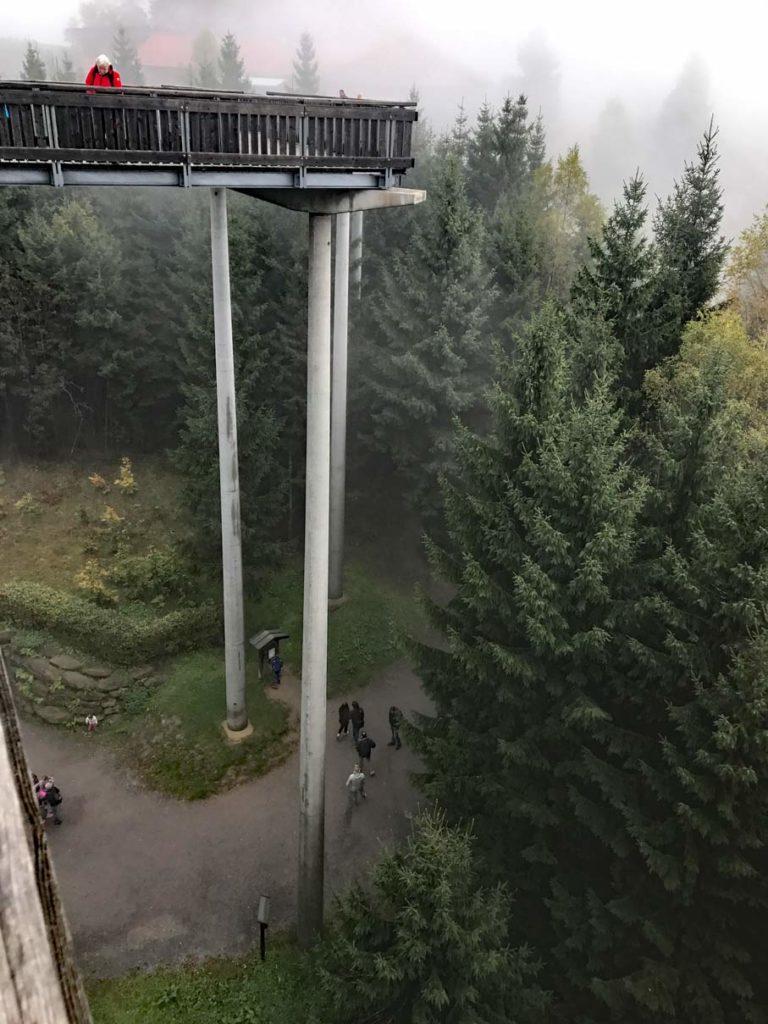 Waldwipfelpfad-Sankt-Engelmar-mit-Kindern