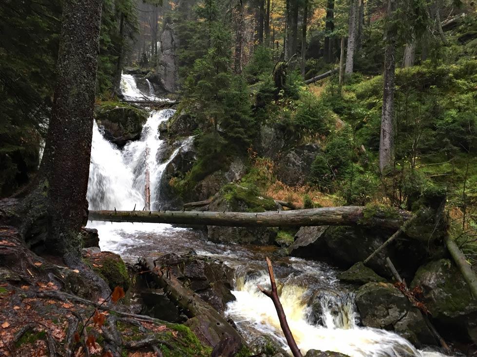 Wanderung-Rissloch-Wasserfälle-mit-Kindern