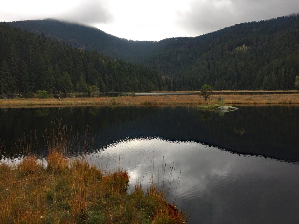 kleiner abersee bayrischer wald