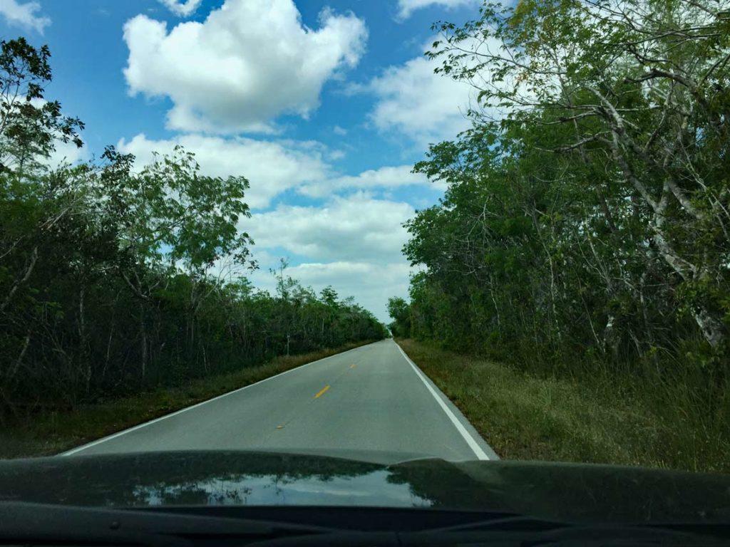Auto-durch-Everglades-Loop