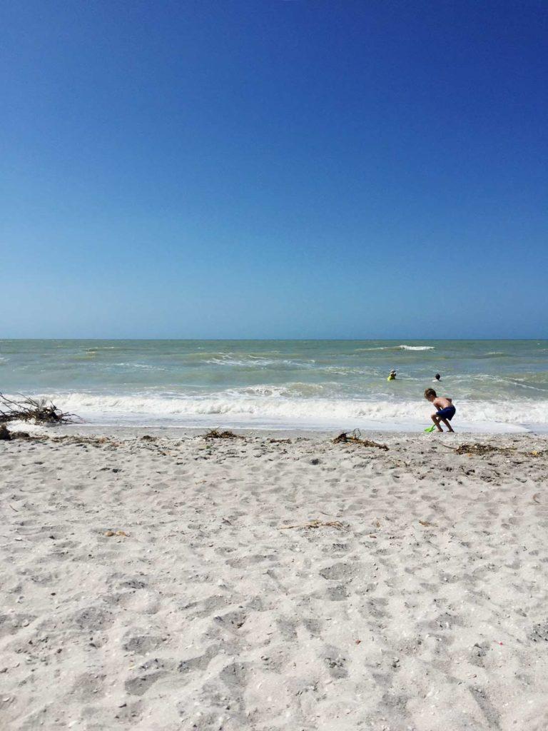 Sanibel-Island-Bowman-Beach-florida-rundreise-mit-kindern