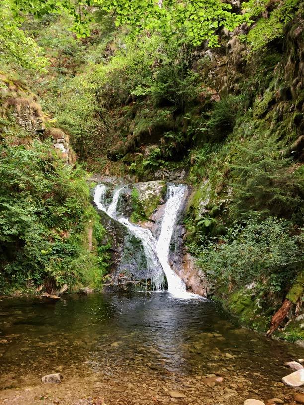 Allerheiligen-Wasserfaelle-Schwarzwald