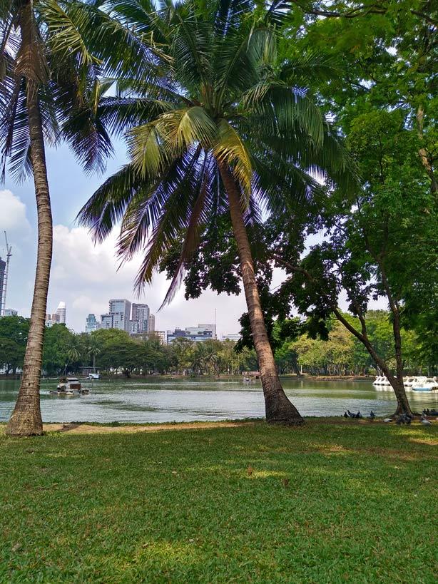 lumphini-park-bangkok-mit-kindern