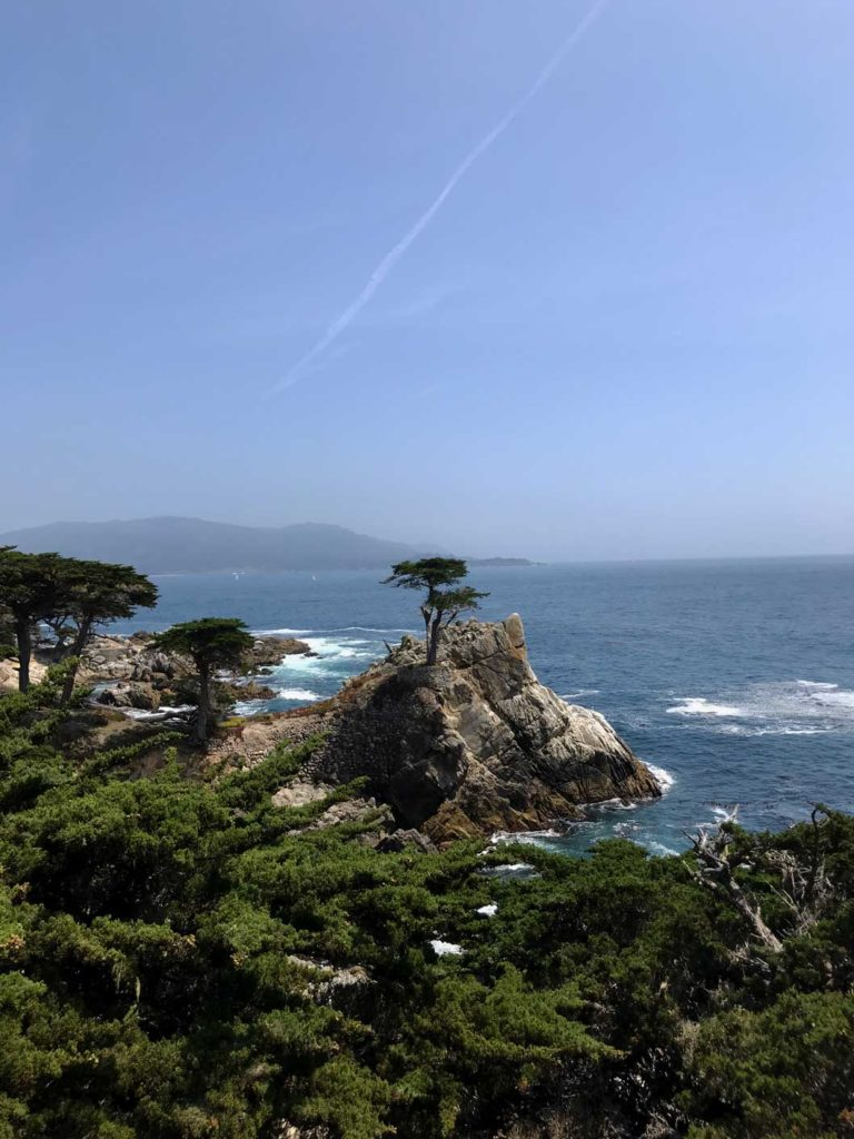 17-mile-drive-the-lone-cypress-highway-1-mit-kindern