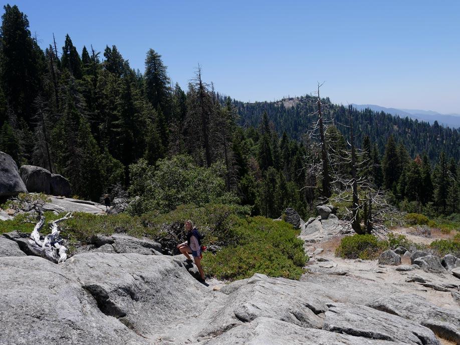 beetle rock sequoia nationalpark mit kindern