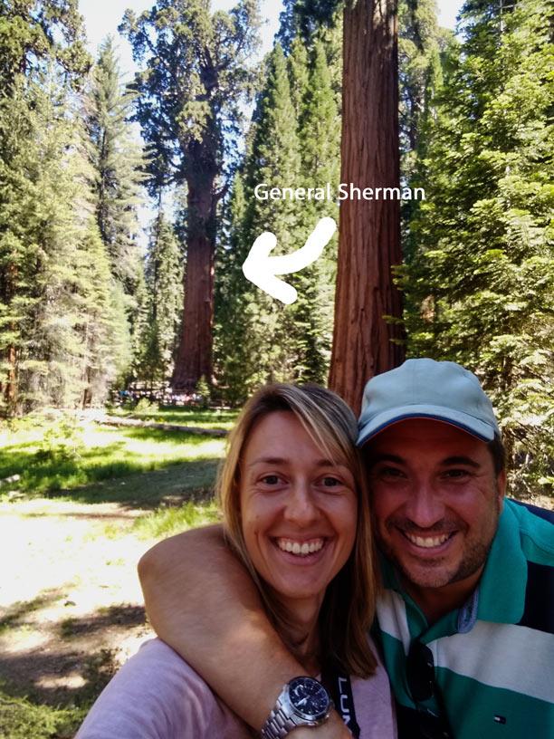 general-sherman-tree-sequoia-nationalpark-mit-kindern