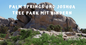 Palm Springs und Joshua Tree Nationalpark