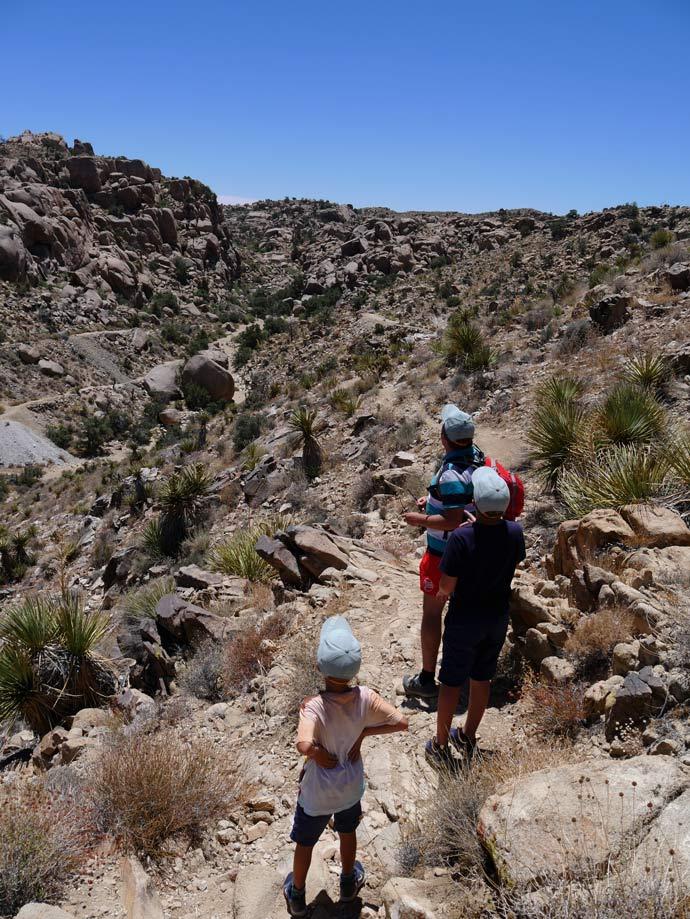 trail-lost-horse-mine-joshua-tree-palm-springs-mit-kindern