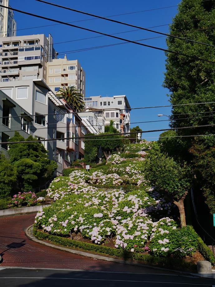 lombard_street_san_francisco_roadtrip_westkueste_mit_kindern