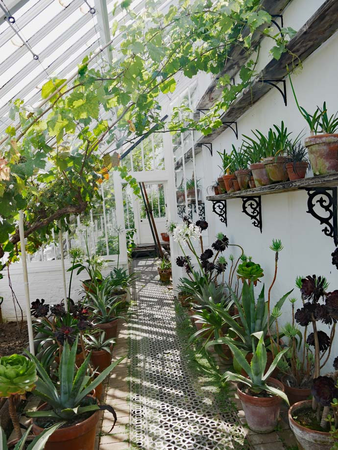 gewaechshaeuser-lost-gardens-of-heligan-cornwall-mit-kindern