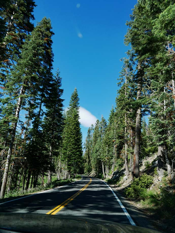 roadtrip kalifornien yosemite mit kindern