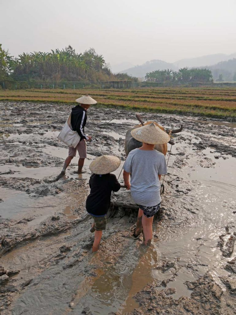 laos-weltreise-mit-kindern