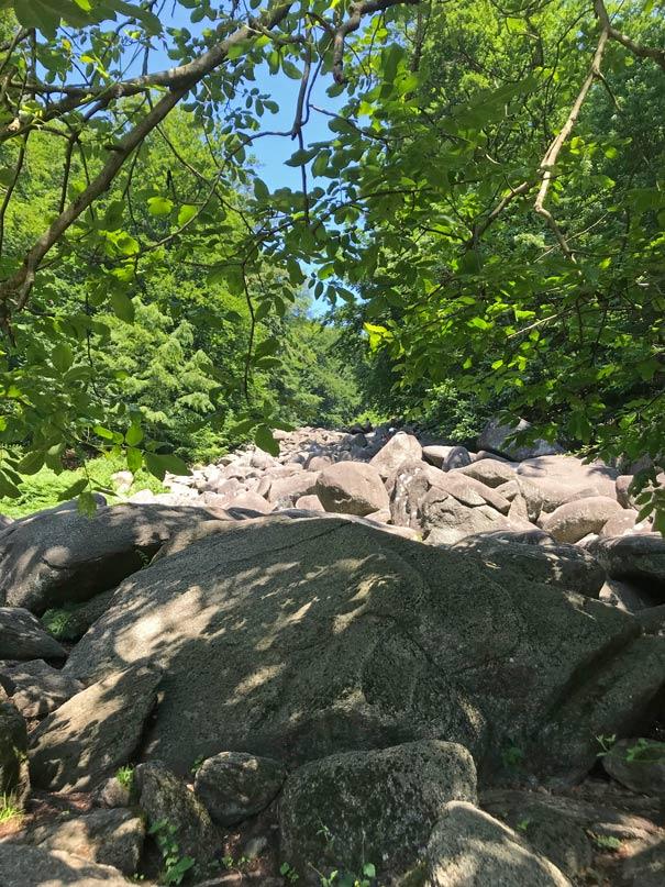 felsenmeer-odenwald-roemische-ausflugsziele-mit-kindern