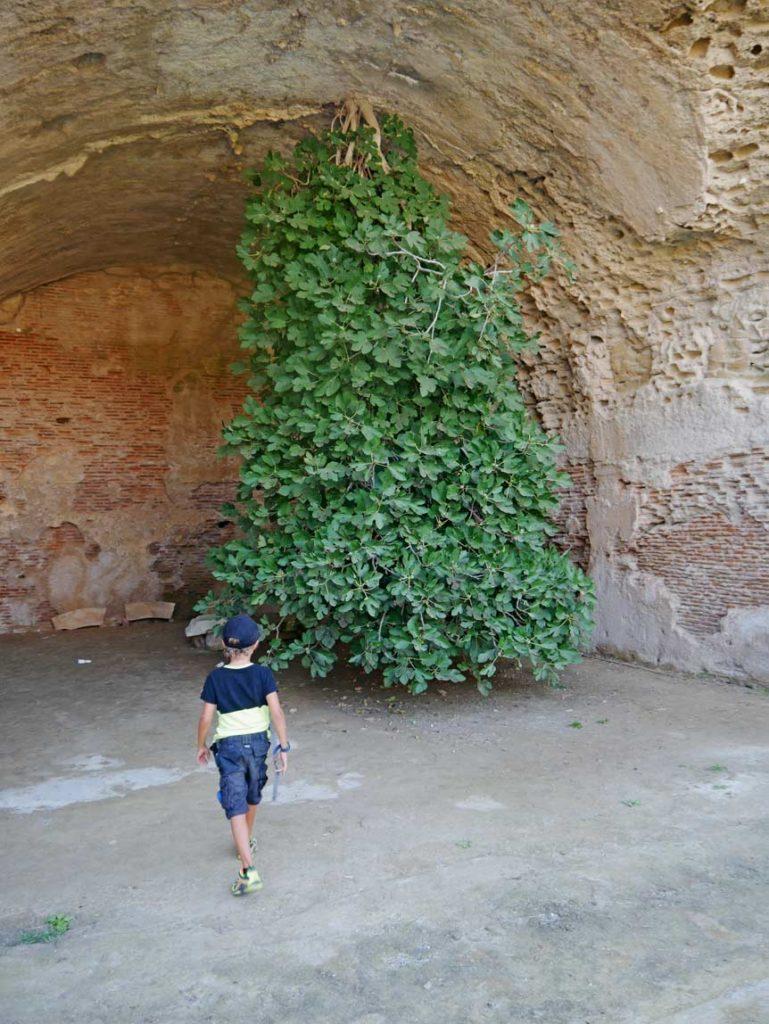 terme di baia feigenbaum neapel mit kindern
