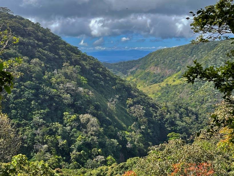 bosque-de-los-ninos-monteverde-tipps