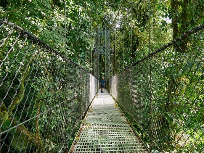hanging-bridges-la-fortuna-costa-rica-mit-kindern-tipps