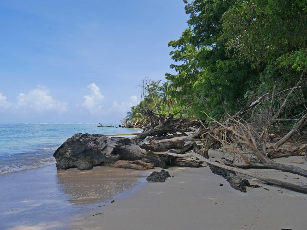 cahuita-nationalpark-karibikküste-costa-rica