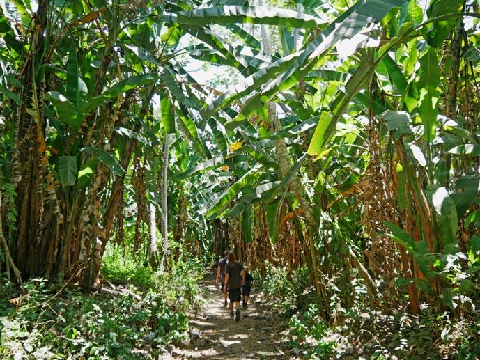 carara-nationalpark-pazifikkueste-costa-rica-mit-kind
