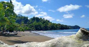 Corcovado Nationalpark – Artenvielfalt auf der Halbinsel Osa