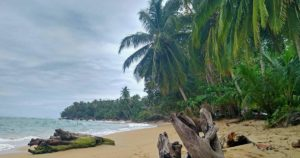 Karibikküste Costa Ricas
