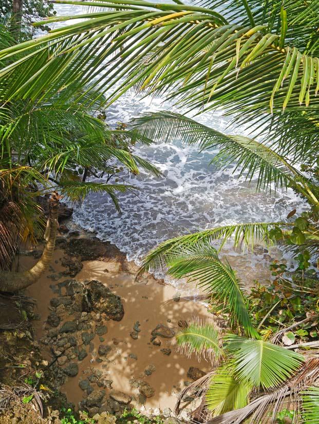 manzanillo-strand-karibikkueste-costa-rica