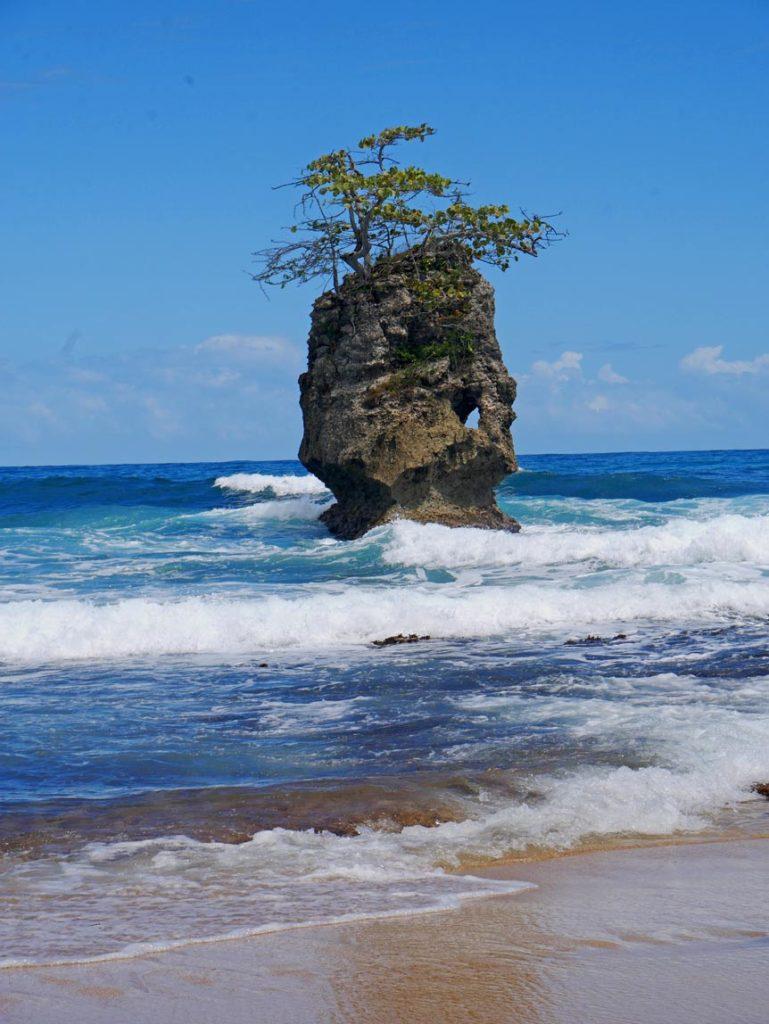 manzanillo traumstrand costa rica karibikkueste