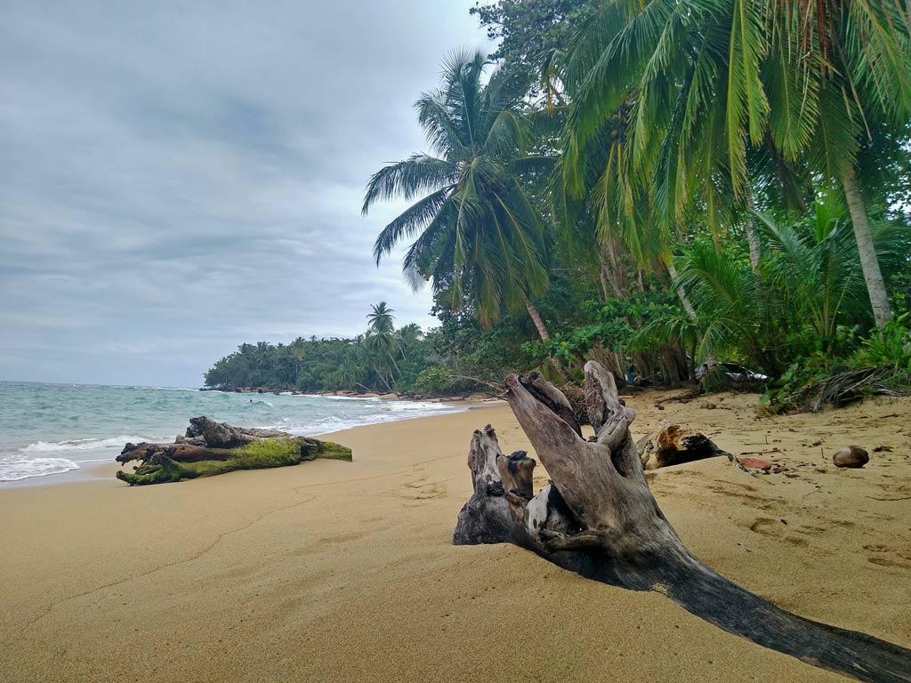 punta-uva-costa-rica-karibikkueste