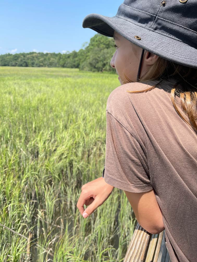 wormsloe savannah reisetipps