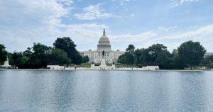 Read more about the article Washington DC mit Kindern erleben